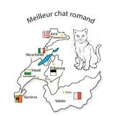Meilleur chat Romand